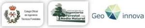 logo coitf geoinnova