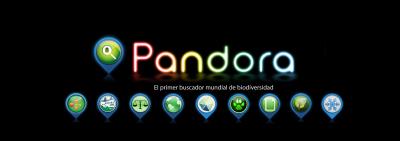 MEDIO AMBIENTE PANDORA