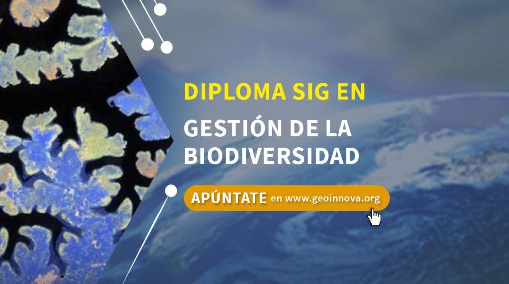 Diploma SIG en Gestión de la Biodiversidad