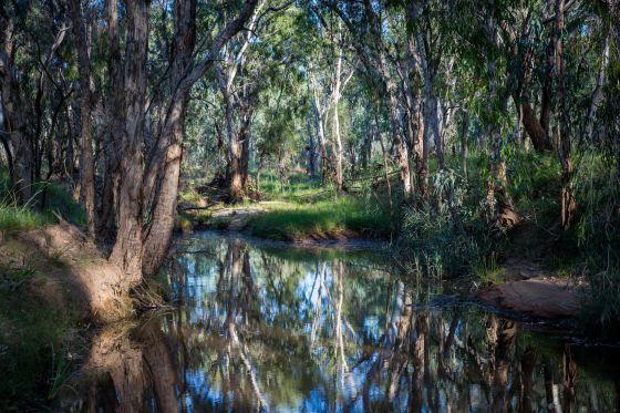 El proyecto minero iba a atravesar el río Carmichael (Greenpeace).