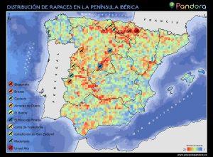 Distribución de las rapaces de la península ibérica