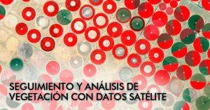 Webinar gratuito: Seguimiento y análisis de vegetación con datos satélite
