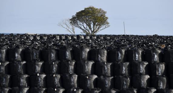 Contaminación provocada por el accidente de Fukushima