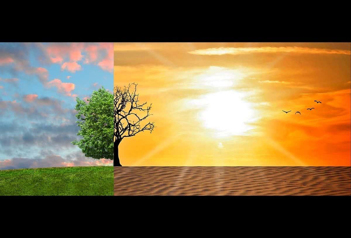 Adaptación al cambio climático en Europa