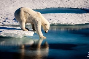 El derretimiento de los hielos del Ártico es un problema visible