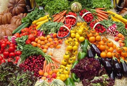 Pérdida de la diversidad vegetal
