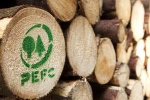 Programme for the Endorsement of Forest Certification Schemes o Programa de Reconocimiento de Sistemas de Certificación Forestal (PEFC)