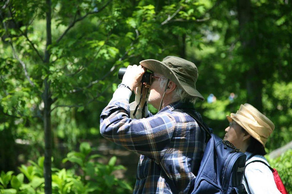 Los binoculares, aliados en los censos de aves