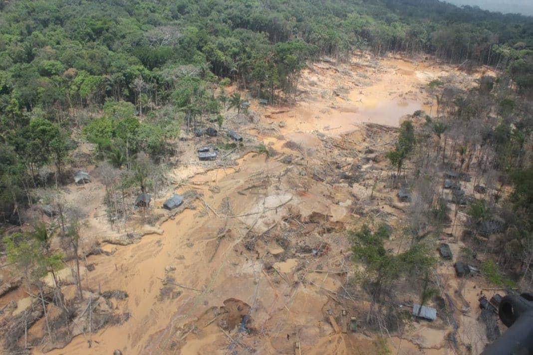 Fuente: www.conservacionybiodiversidad.cl