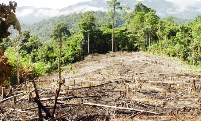 Fuente: www.diariodevallarta.com