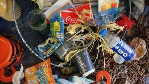 La basura es un problema para la vida que habita en los océanos