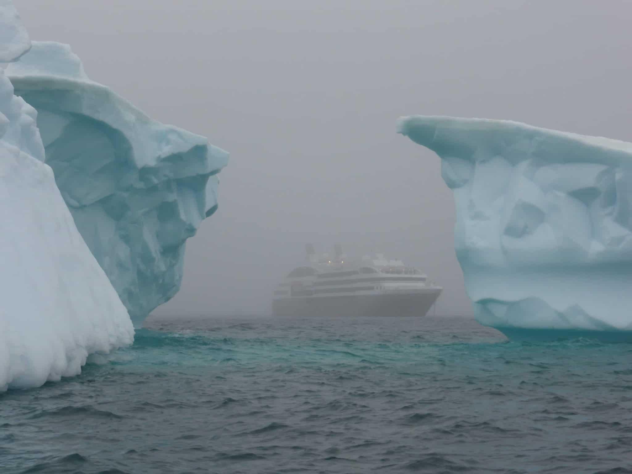 El hallazgo de mejillones en Antártida alerta sobre el estado ambiental
