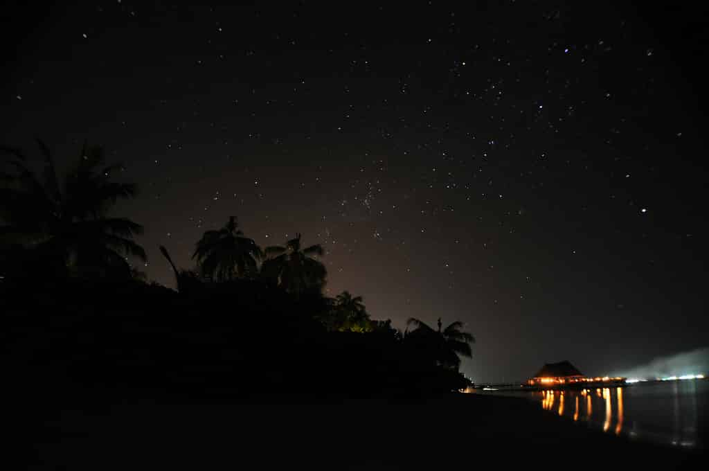 Unos momentos de oscuridad para reflexionar sobre la naturaleza #LaHoradelPlaneta