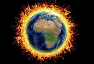 El aumento de la temperatura global amenaza la salud de los ecosistemas