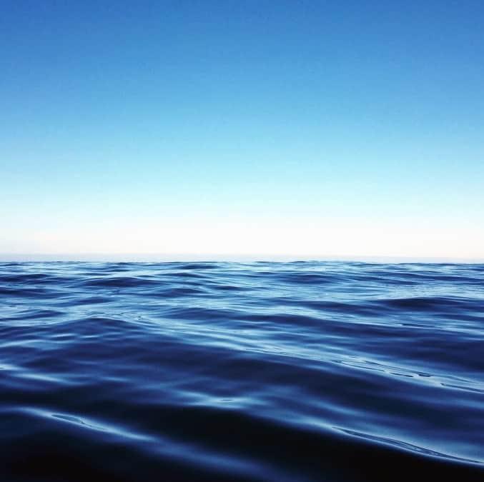 Los ambientes anóxicos en los océanos se han cuadruplicado en los últimos 50 años