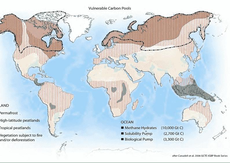 Almacenes biológicos de carbono vulnerables a la temperatura (Canadell et al, 2006) Fuente: ustednoselocree.com