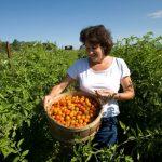 Pequeños agricultores pueden mantener la divrsidad en los cultivos