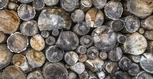 El Reglamento EUTR está vinculado a la madera y sus productos