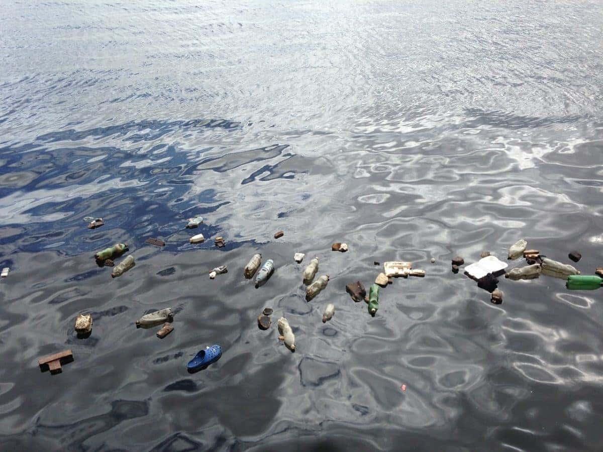 Algunos de los residuos flotan, mientras que otros se hunden hasta profundidades poco exploradas por el ser humano