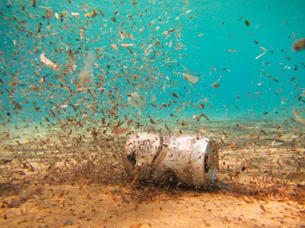 Los residuos en los océanos aparecen hasta en profundidades poco exploradas