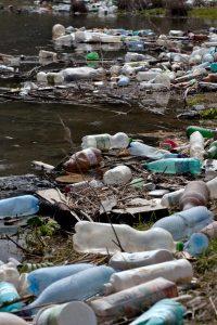 El medio marino es el ambiente más afectado por los plásticos