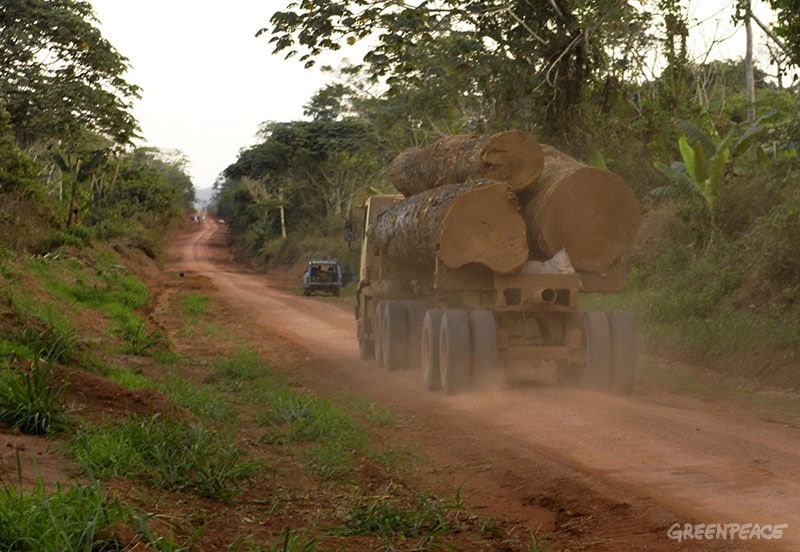 Truck transporting logs on the Siforco road between Engengele and Kpenge in the concession K-8 near Bumba. Fuente: Greenpeace