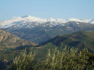Gracias a los visores cartográficos se puede hacer un recorrido por los sitios de la Red Natura 2000