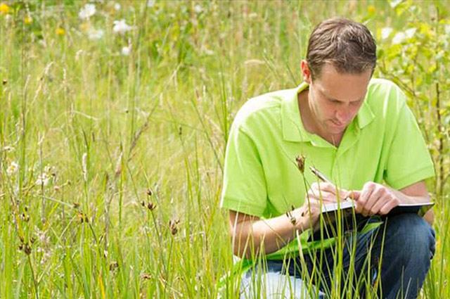 Evaluación Ambiental Estratégica de planes y programas